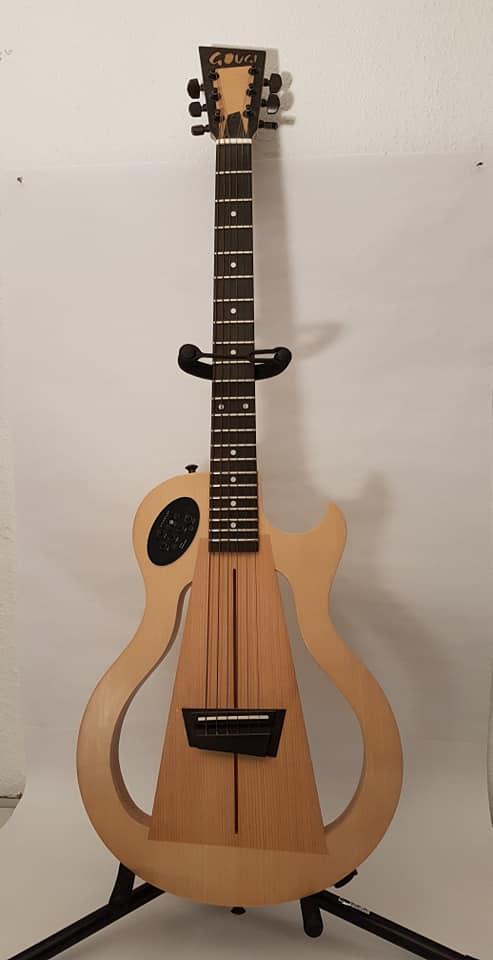Guitare Gougi ED-F6